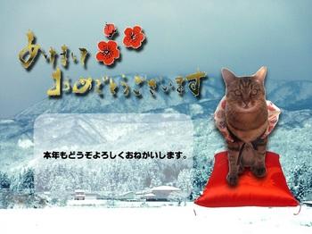 袢纏りんご for Y.jpg