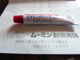 P1020414_R.JPG